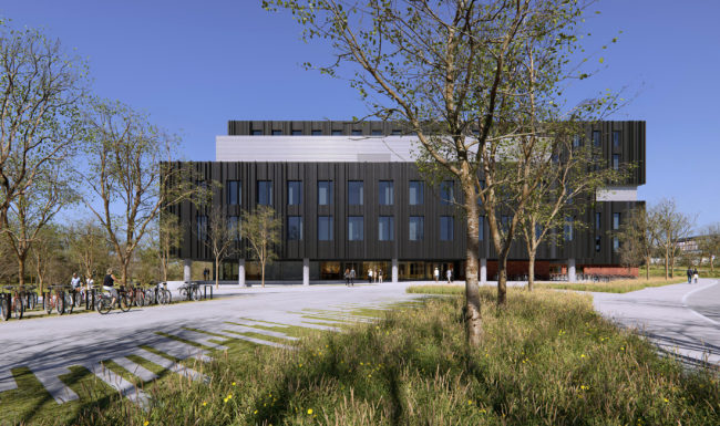 3d architectural render visualisation illustration of black building in spring with long grass